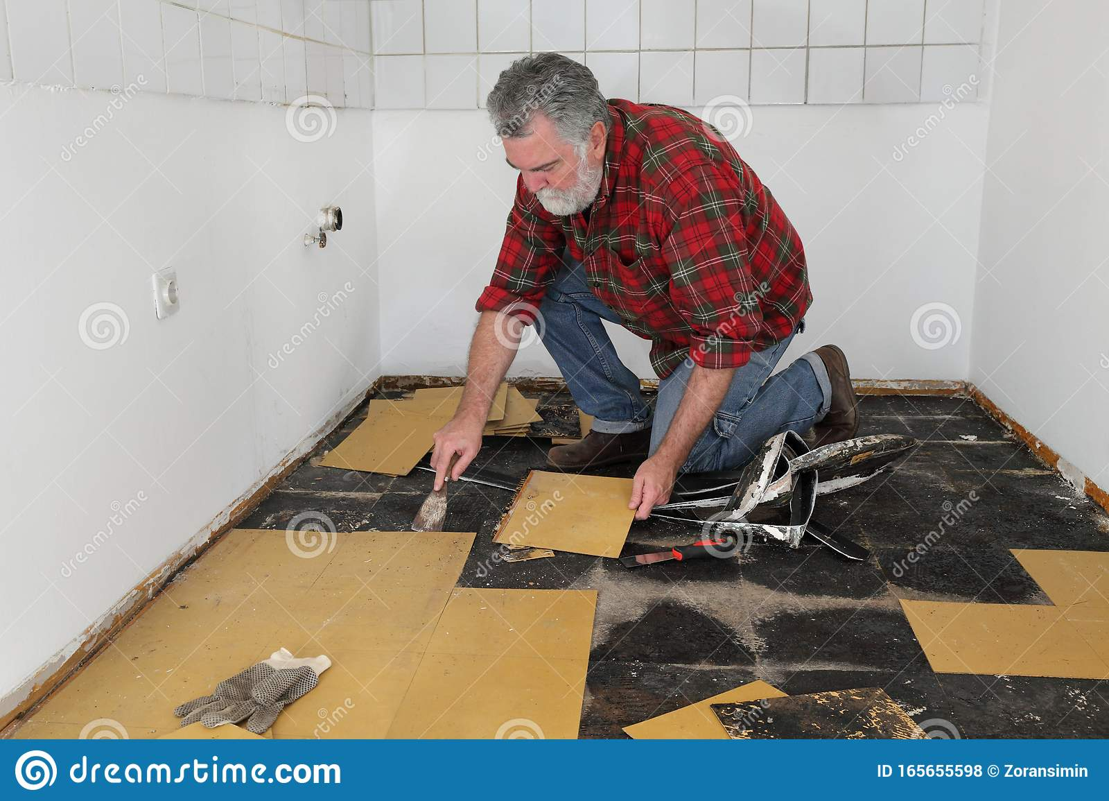 Old Vinyl Tiles Removal From Floor In A Room Or Kitchen Stock Photo Image Of House Installing 165655598