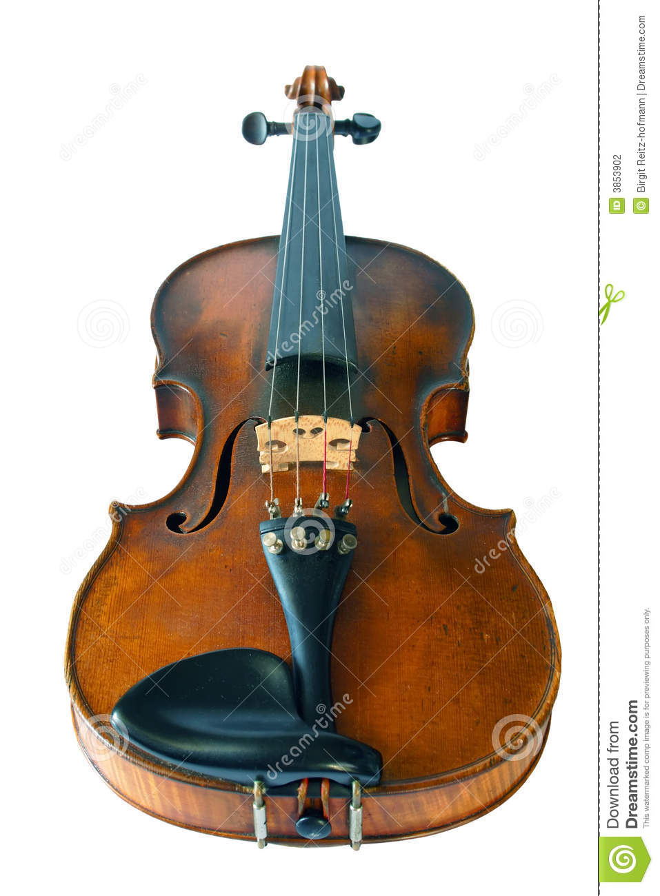 Old violine isolated