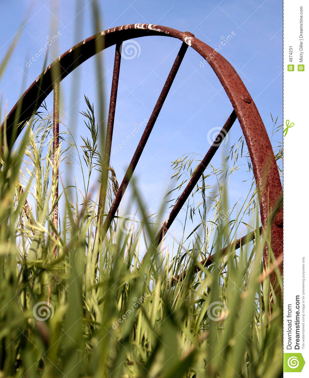 Download Old Wagon Wheel in Grass stock image. Image of blue, heritage - 4874231