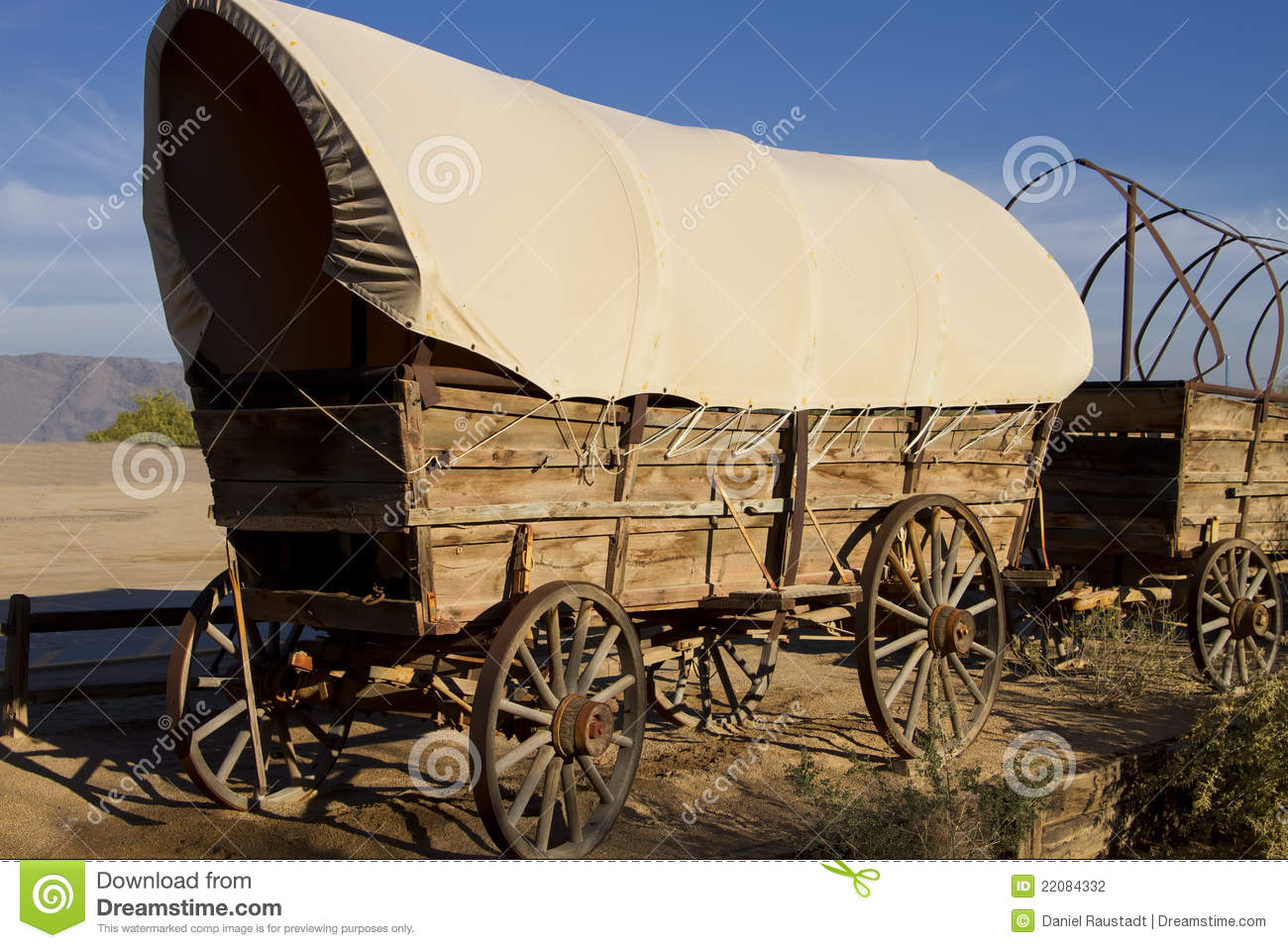 Historic old Western covered wagons form a wagon train.