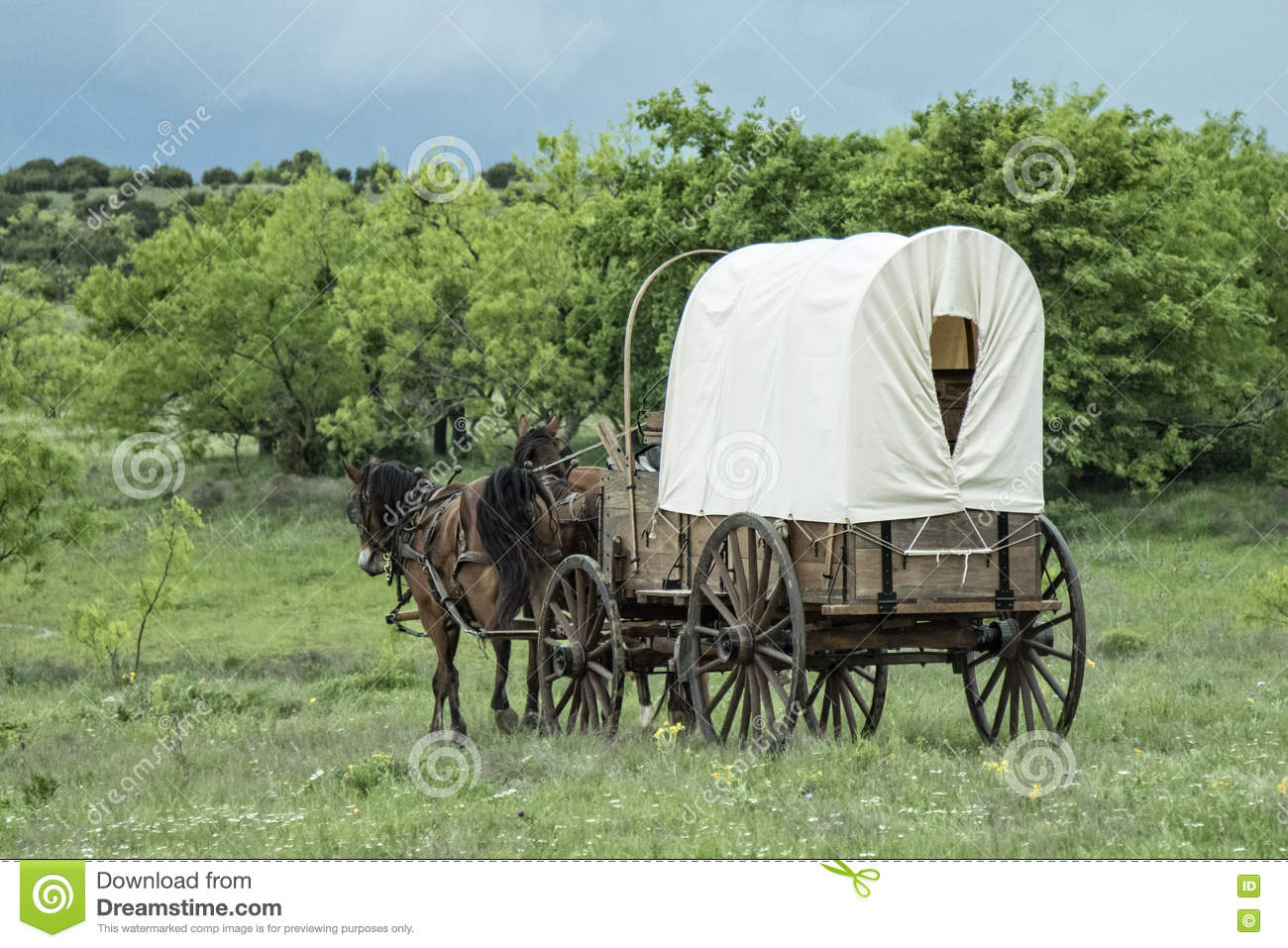 Old western covered wagon in Texas plains