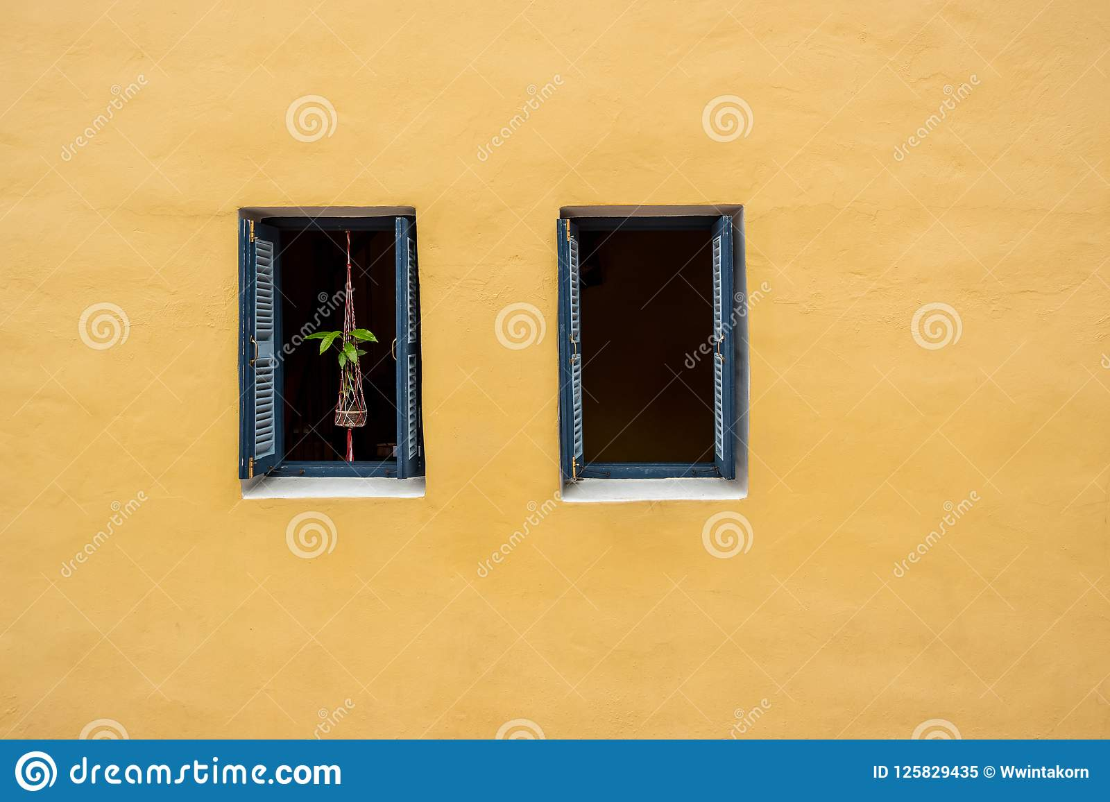 Old Window With Hanging Tree Pot Decoration On Yellow Wall Stock ...