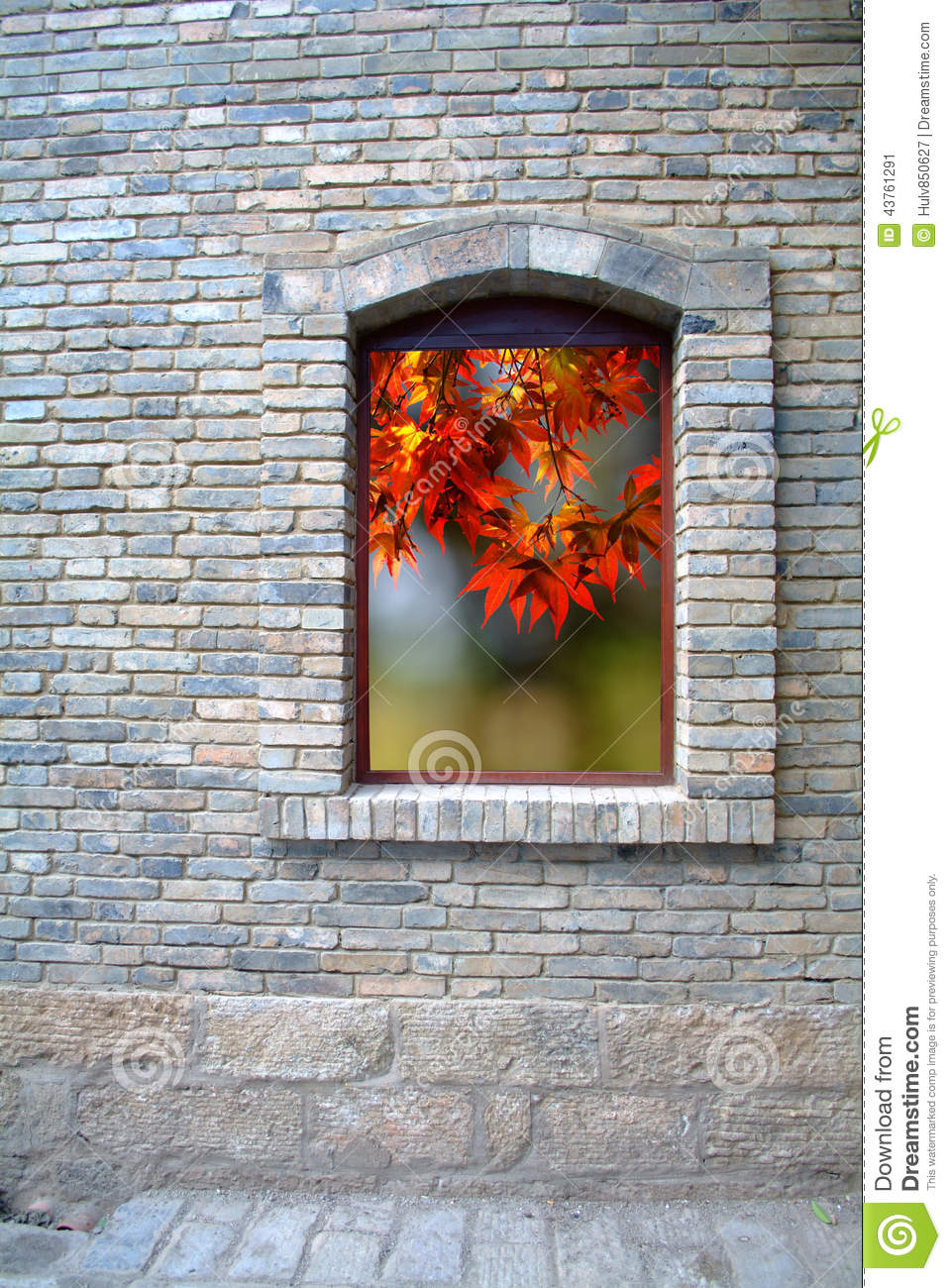Old Window and maple leaf