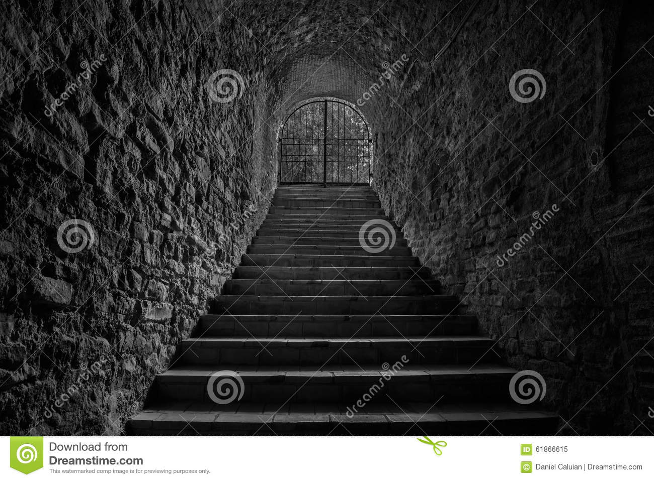 Old Wine Cellar Tunnel Entrance Stairway Leading To