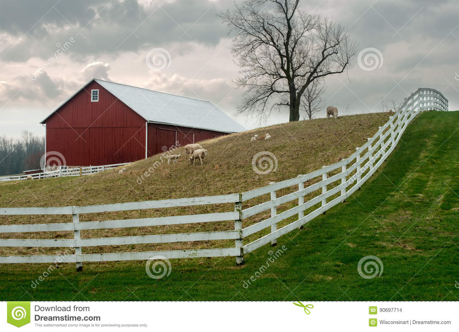 Old Wisconsin Dairy Farm, Sheep