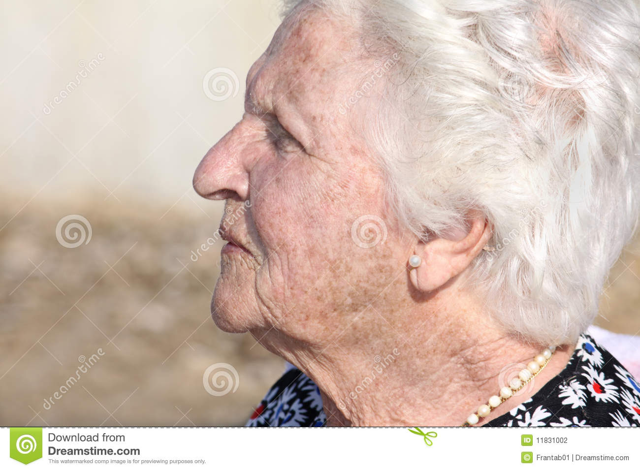Old woman profile
