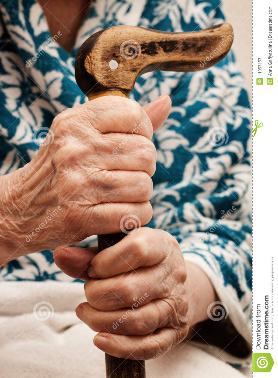 Hand Holding Stick ~ Old woman s hand holding a stick stock image of
