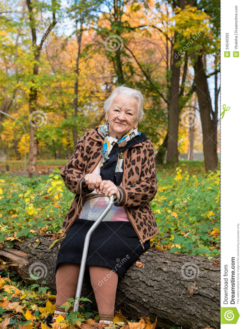 Old Woman Sitting On A Log Stock Photos Image 34540393