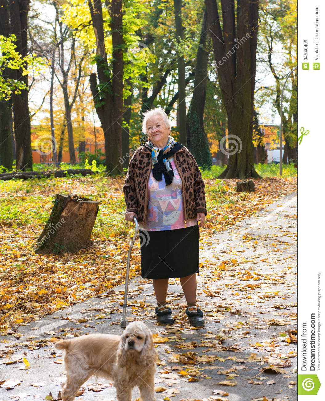 Walk Dogs For Elderly
