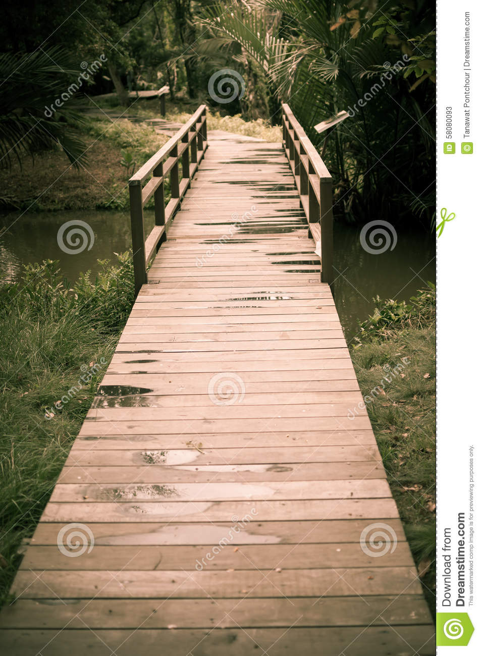 Old wood bridge pathway