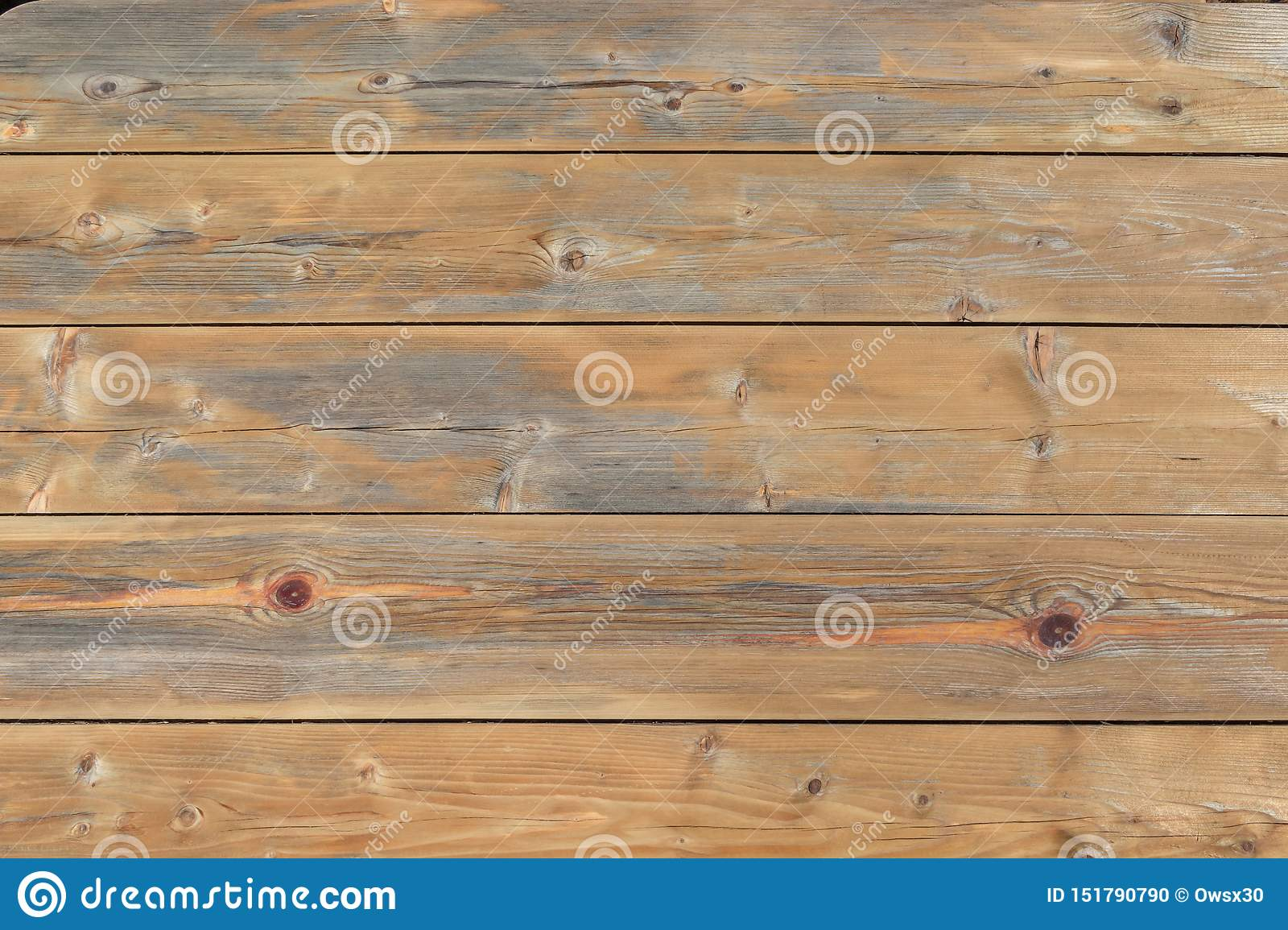 Old Wood Texture Natural Pine Wood Background With Knots
