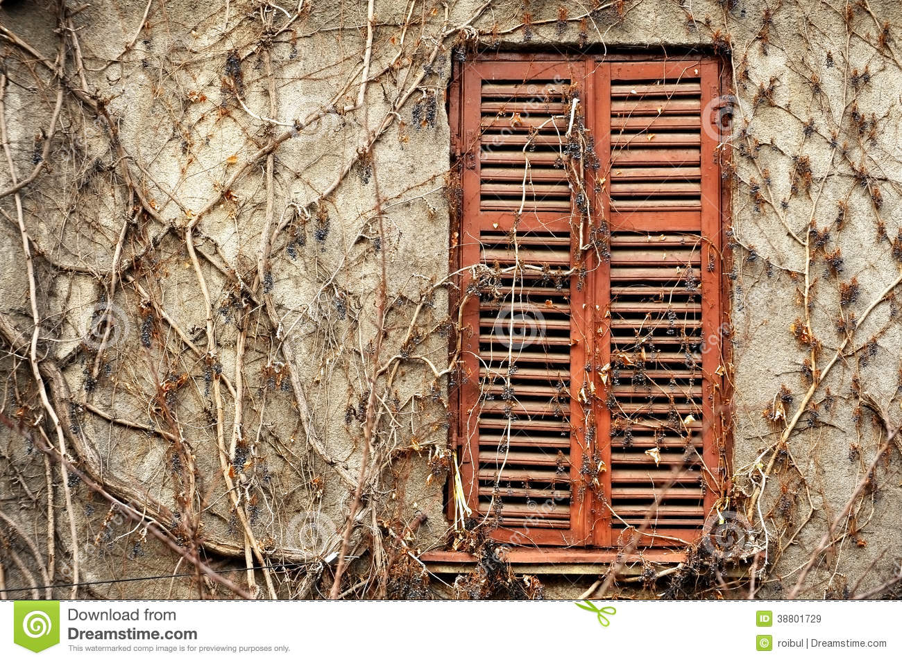 Wood Shutters Closed : Old wood window with shutters closed stock photo image