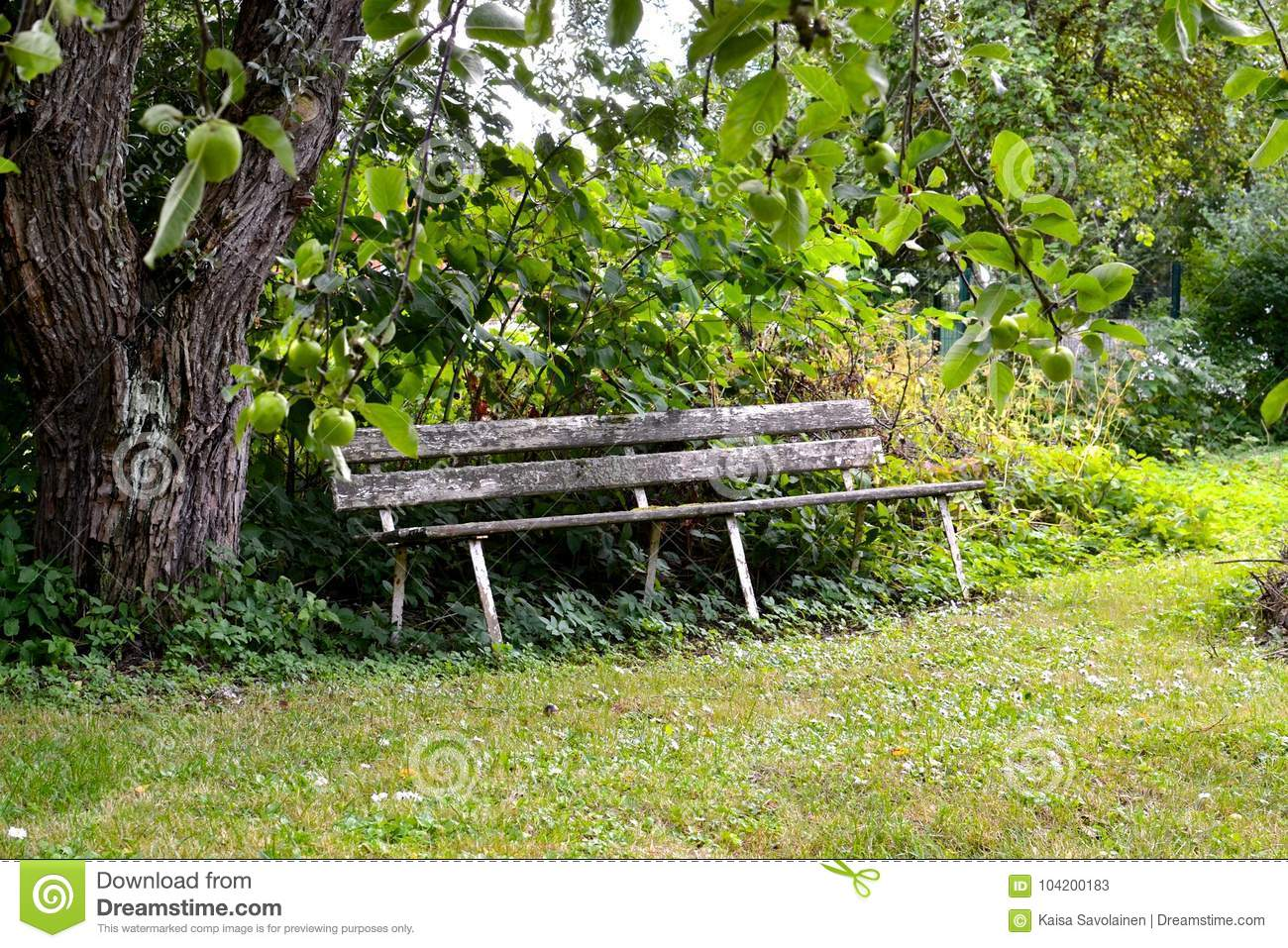 Excellent Old Wooden Bench In Garden Stock Image Image Of Bench Cjindustries Chair Design For Home Cjindustriesco