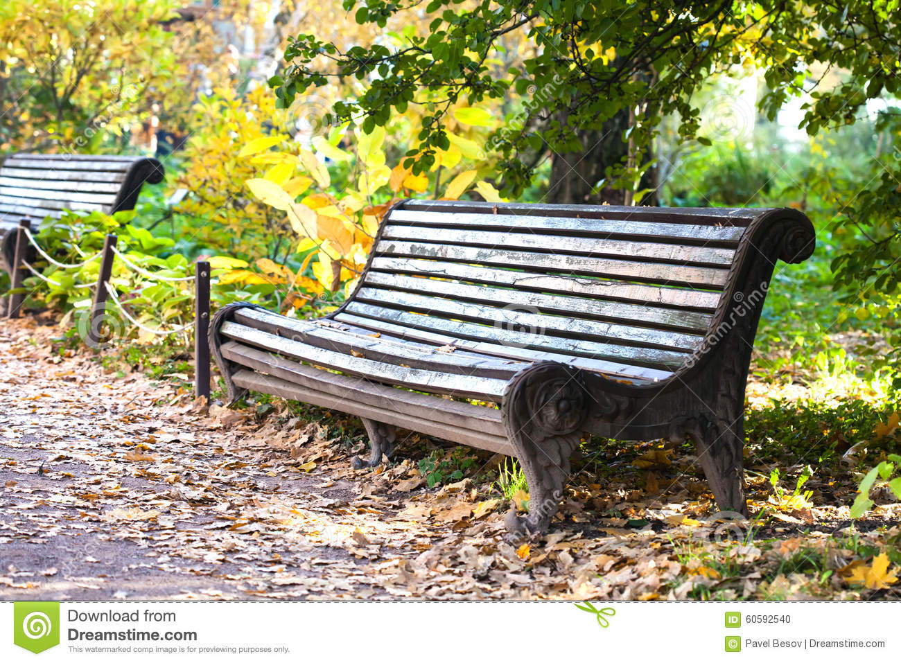 Old Wooden Bench In The Park Autumn Park Landscape Stock