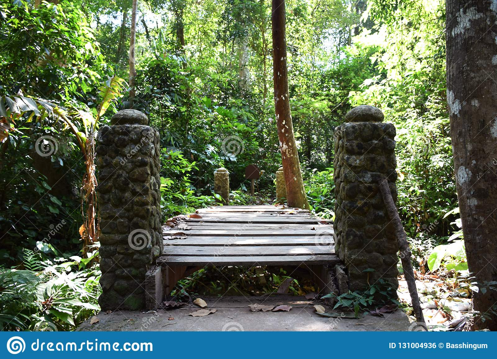Old wooden Bridge and stone pillar with forest background