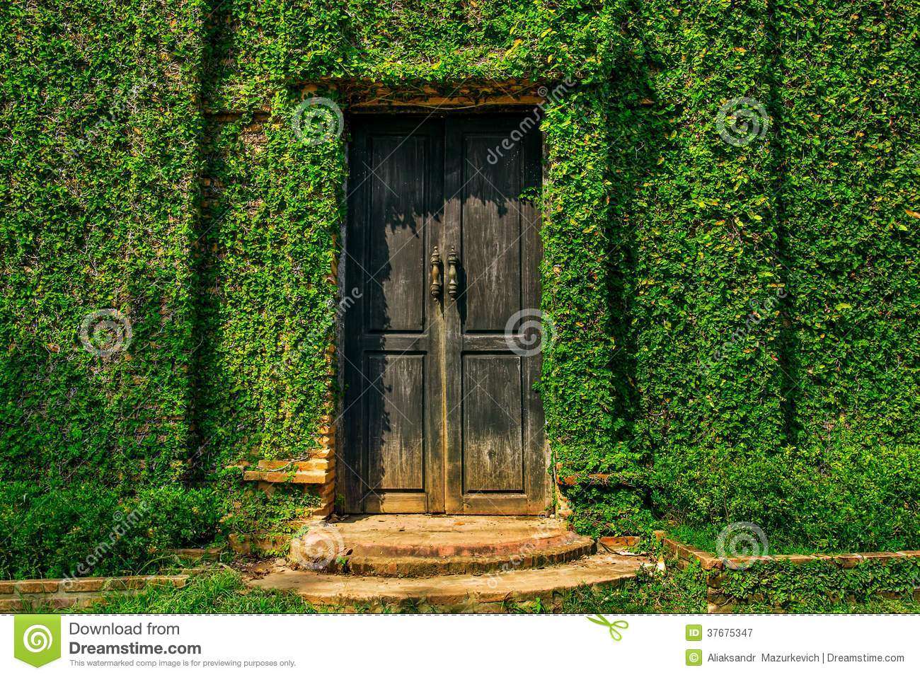 Old wooden door in the wall royalty free stock photography for Door in the wall