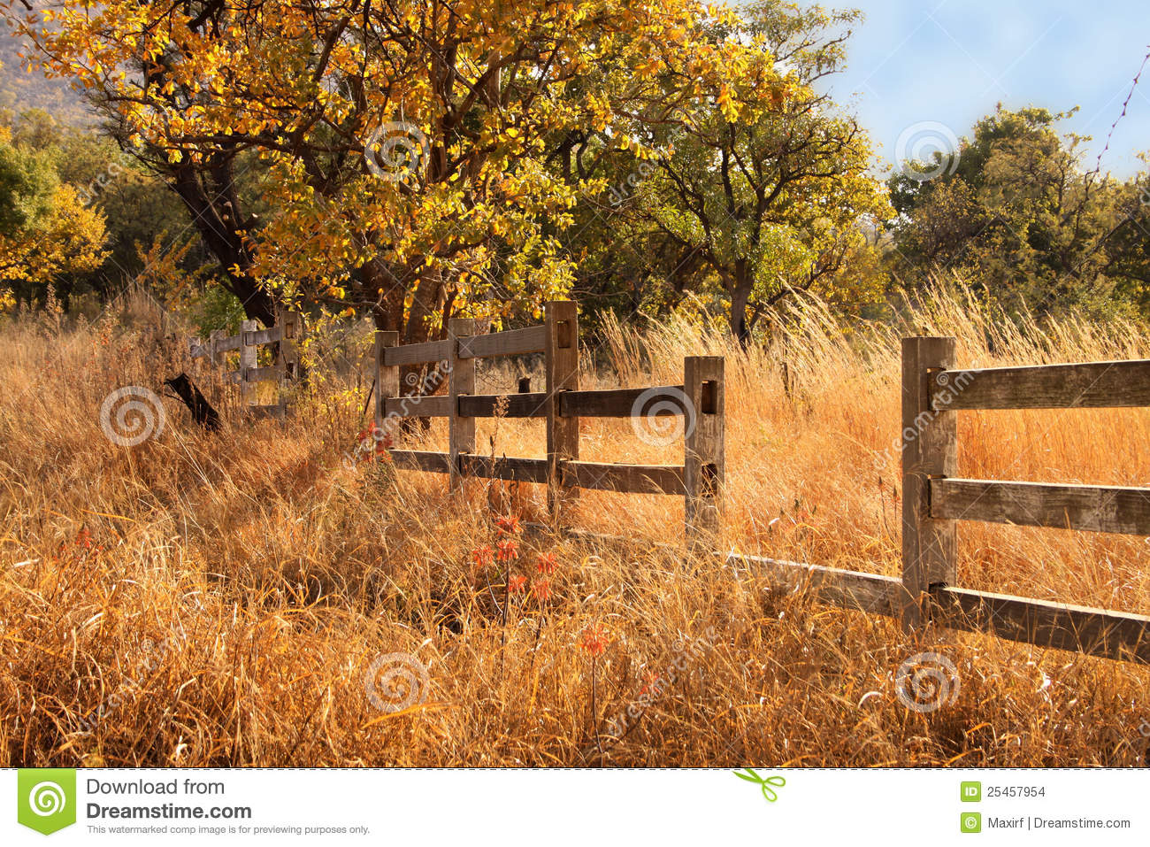 Old Wooden Farm Fence Stock Photo Image Of Shadow Photo