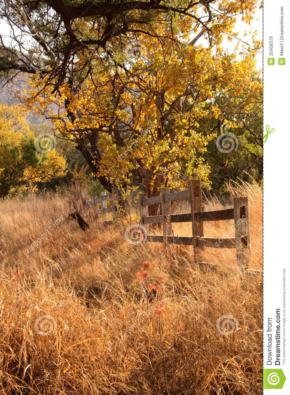 Old wooden farm fence royalty free stock images image 25458379 - Rustic wood fences a pastoral atmosphere ...