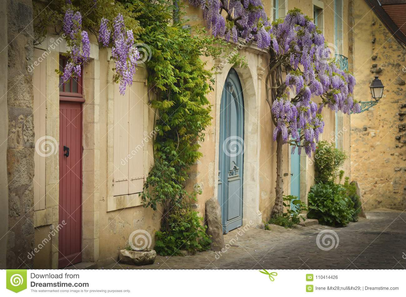 Old Wooden French Doors With Climbing Wisteria On The Wall Stock