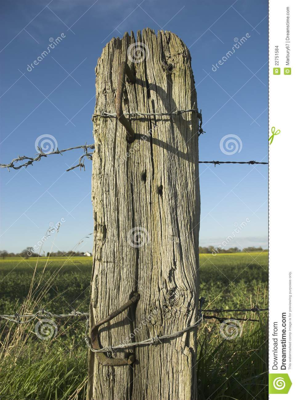 Old Wooden Post Stock Photo Image Of Barbed Wire Wood