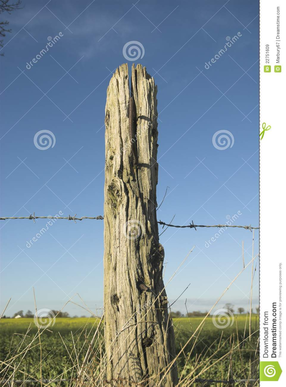 Old Wooden Post Stock Image Image Of Rural Wood Wooden