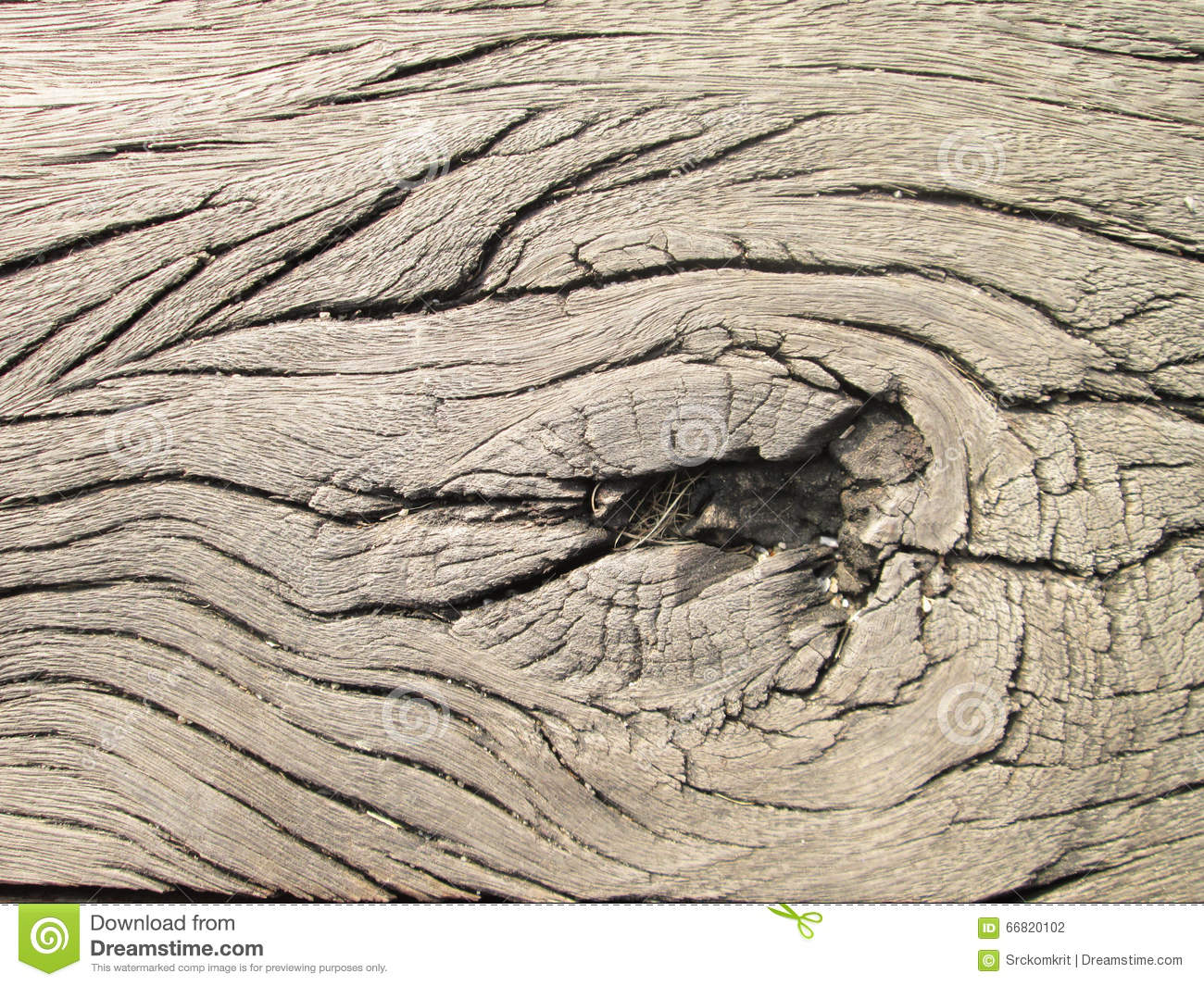 Old wooden texture made by nature. Dried wooden board