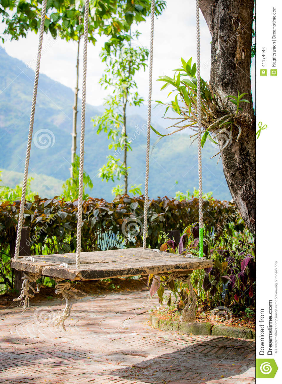 Old wooden vintage garden swing hanging from a large tree Wood tree swing and hanging kit
