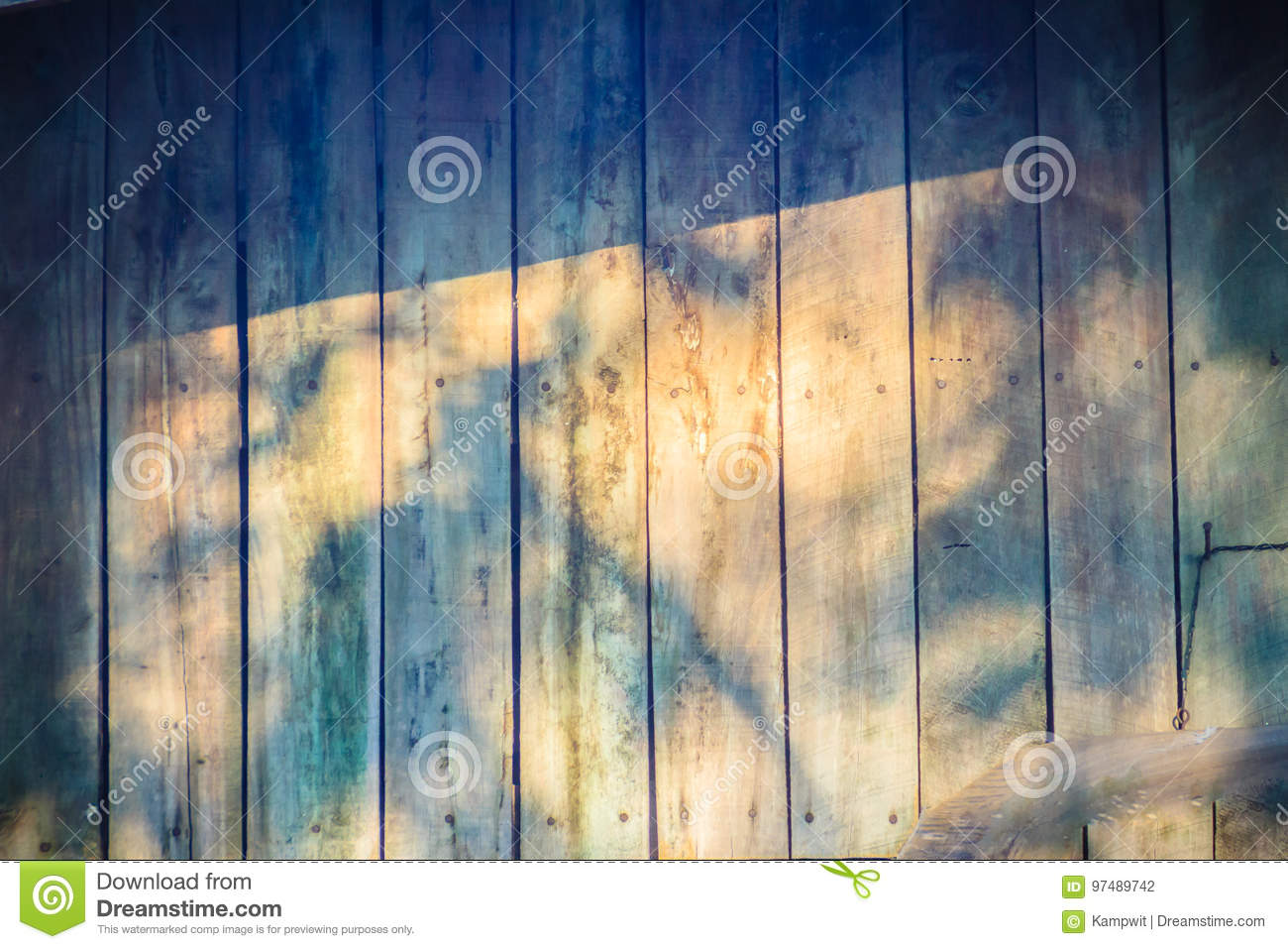Old Wooden Wall With Shadows Of Tree Branches. Shadow Of A Tree ...