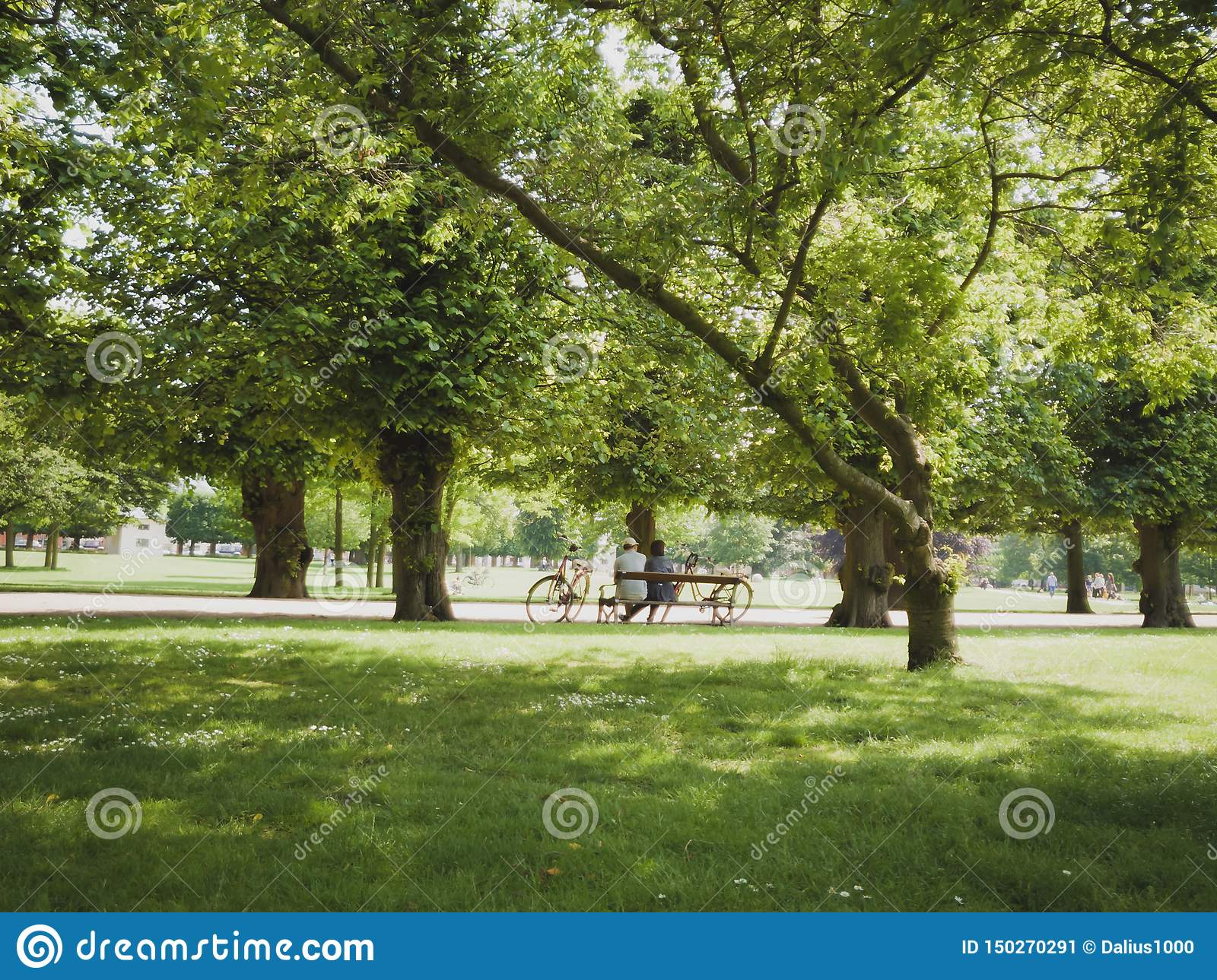 Older couple sitting in park on bench with bicycles Copenhagen city Denmark