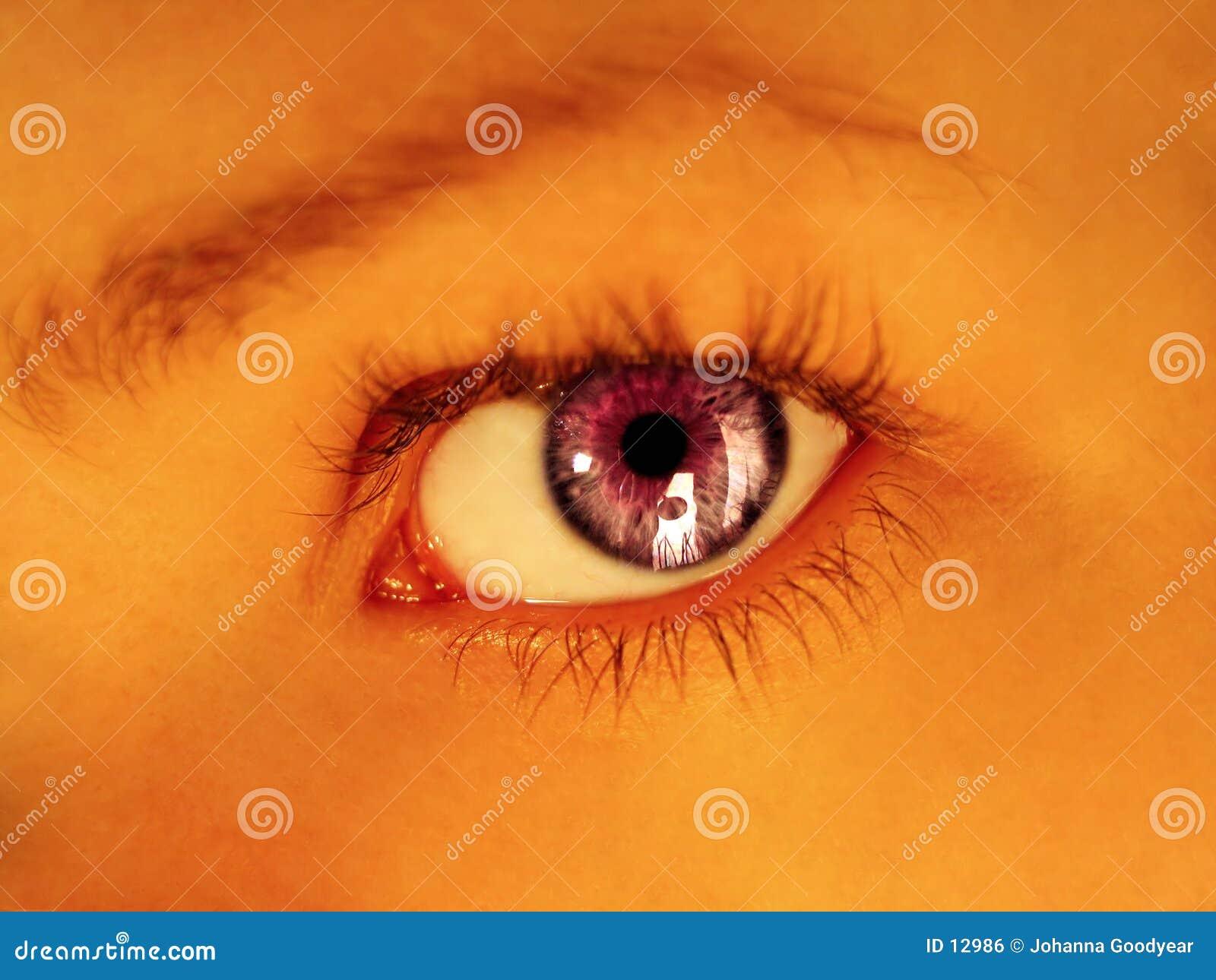 Olhar fixo roxo