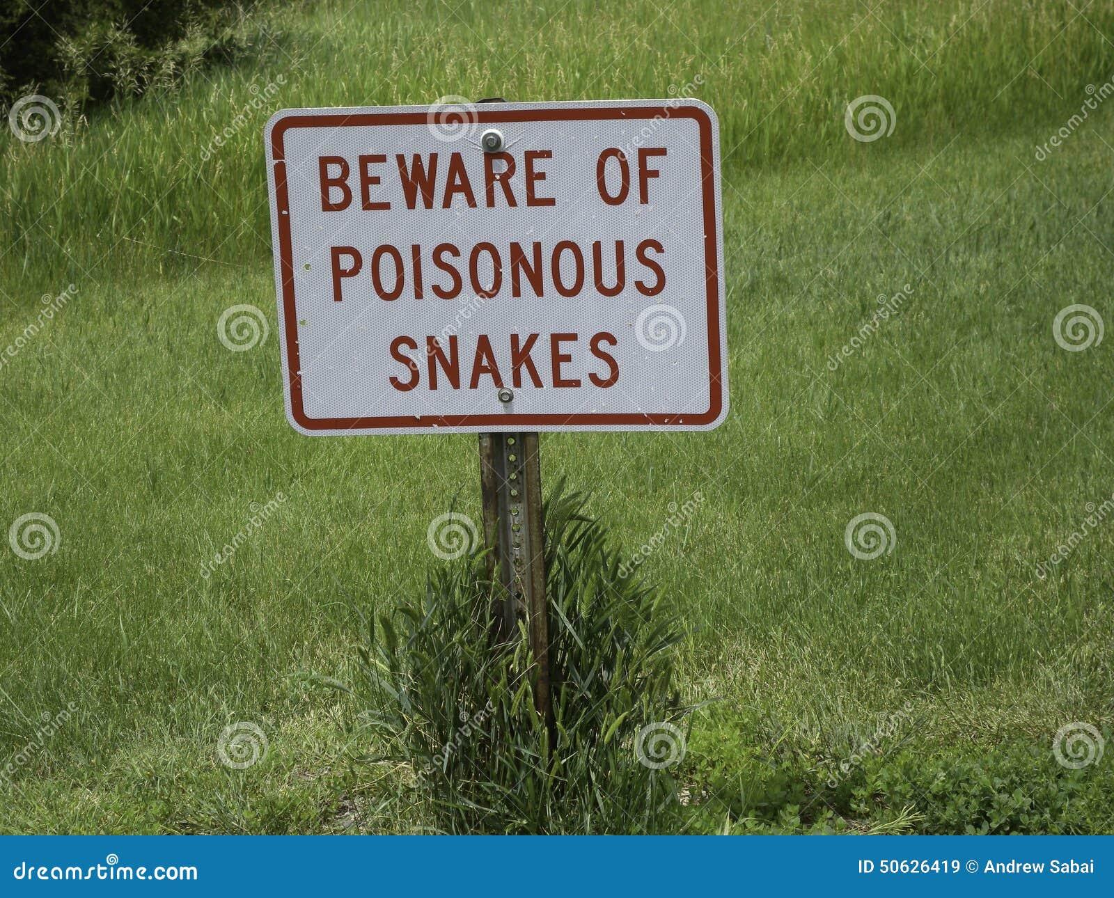 Olhe para fora para serpentes