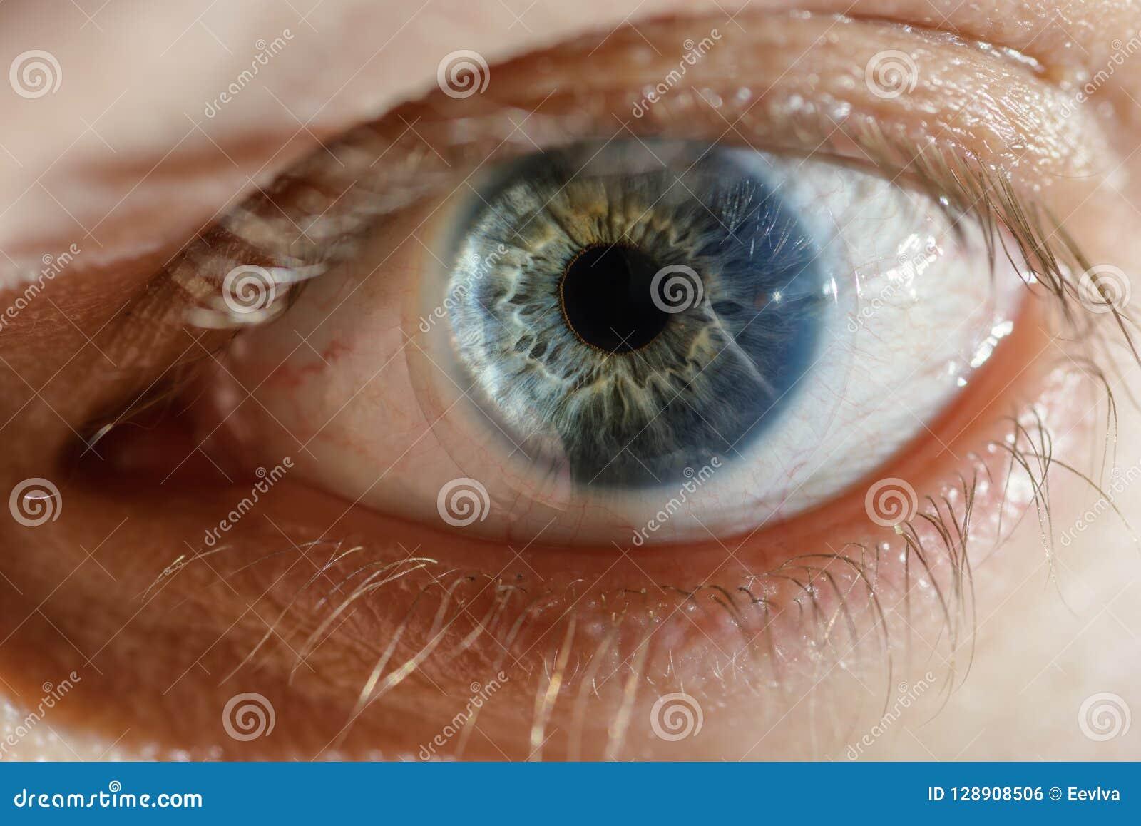 Olho azul do homem com lente de contato