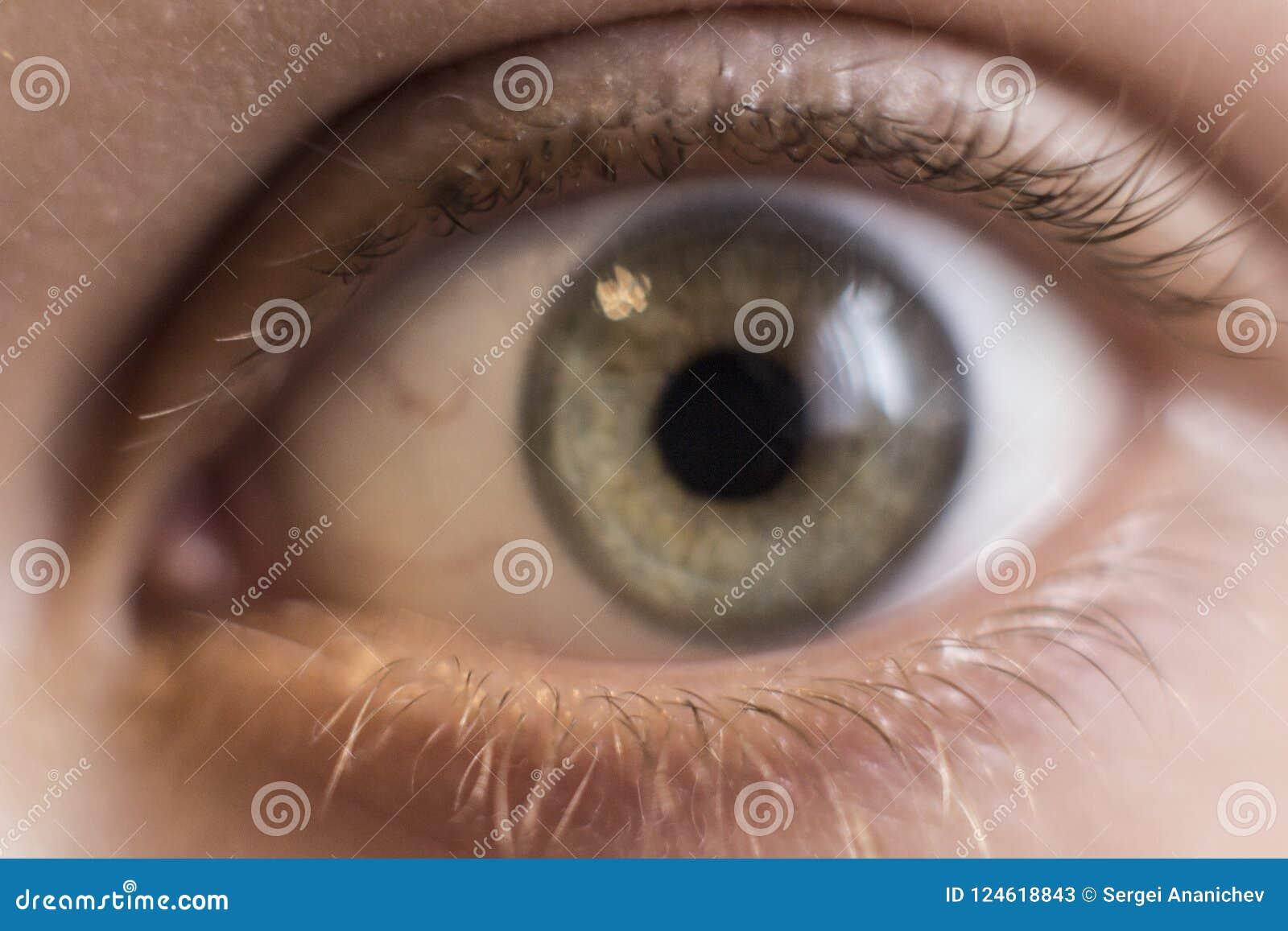Olho do ` s da criança