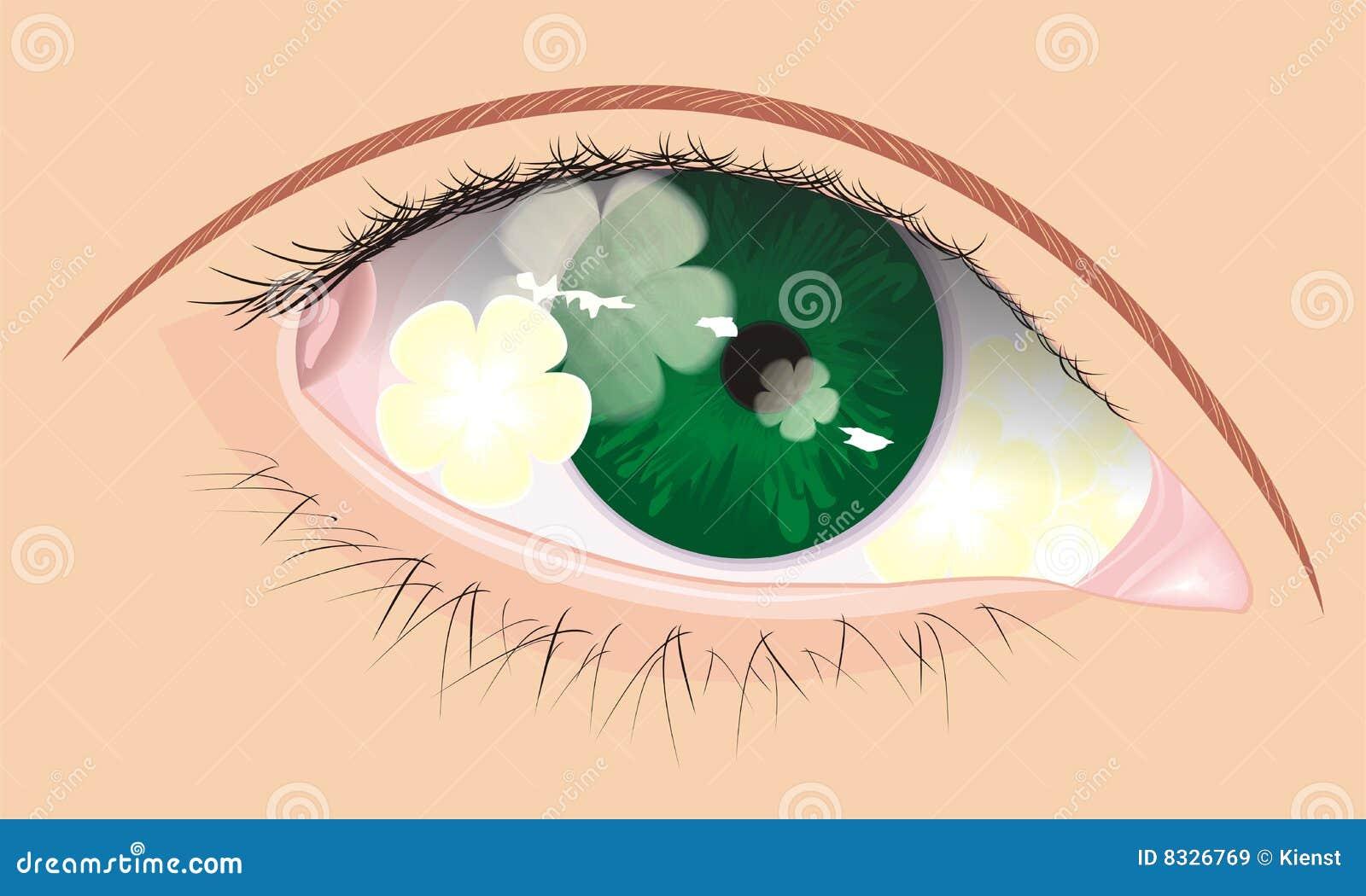 Olho do vetor com sombra da flor para dentro imagens de - Flores de sombra ...