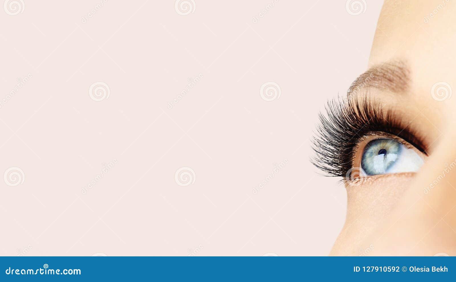 Olho fêmea com as pestanas falsas longas extremas e o forro preto Extensões da pestana, composição, cosméticos, beleza