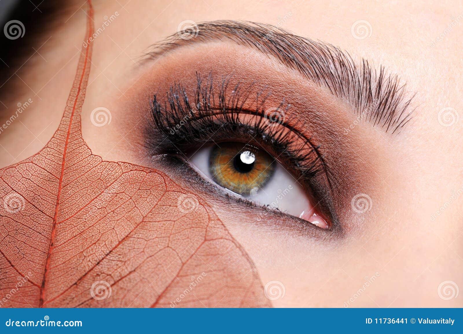 Olho fêmea com uma composição marrom