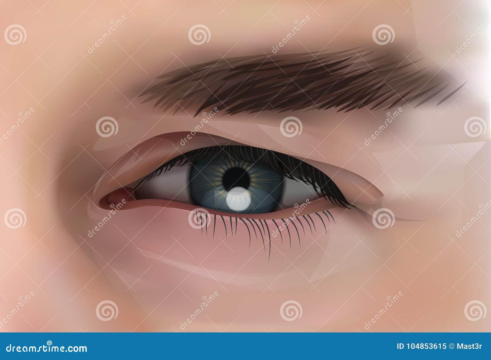 Olho realístico de Person Closeup masculino caucasiano