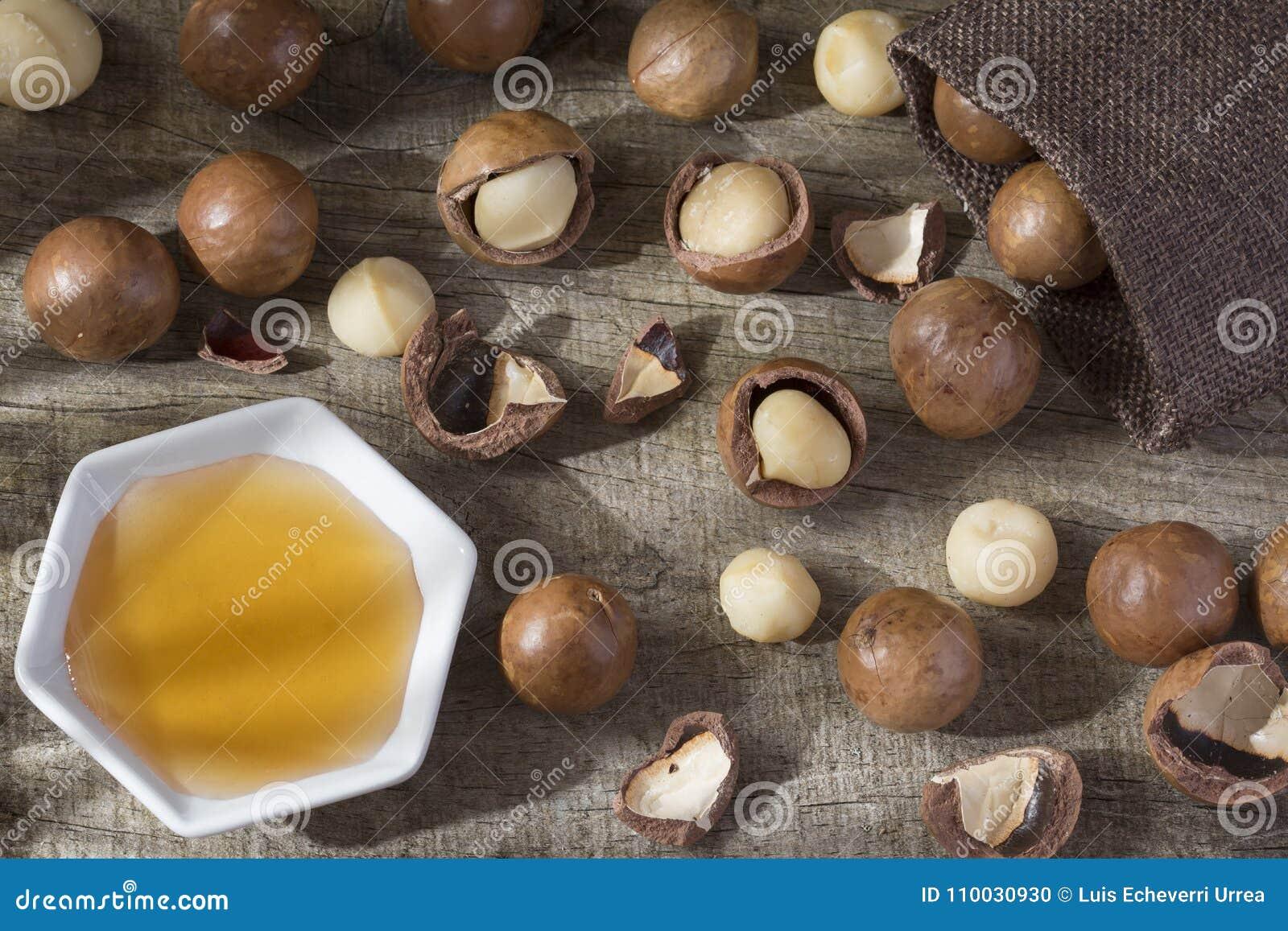 Olie en macadamia notenmacadamia integrifolia