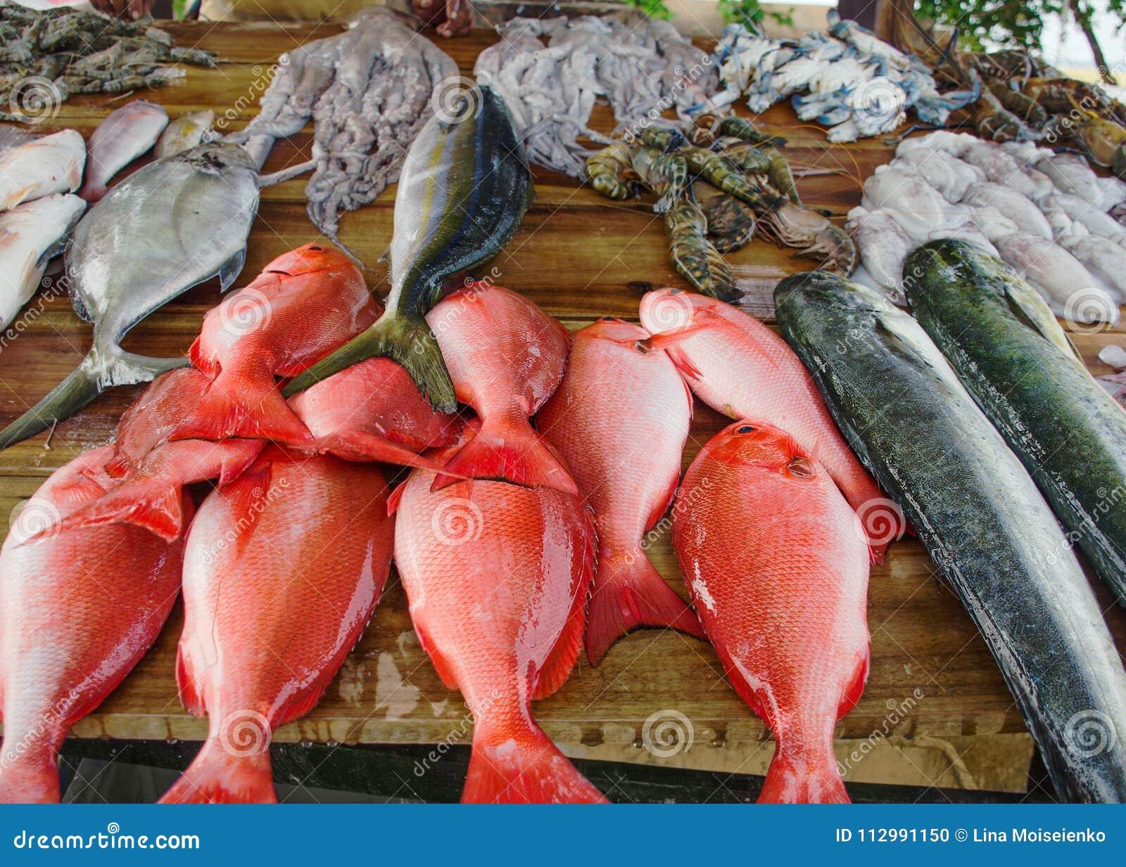 Olik nytt fångad fisk på träräknare