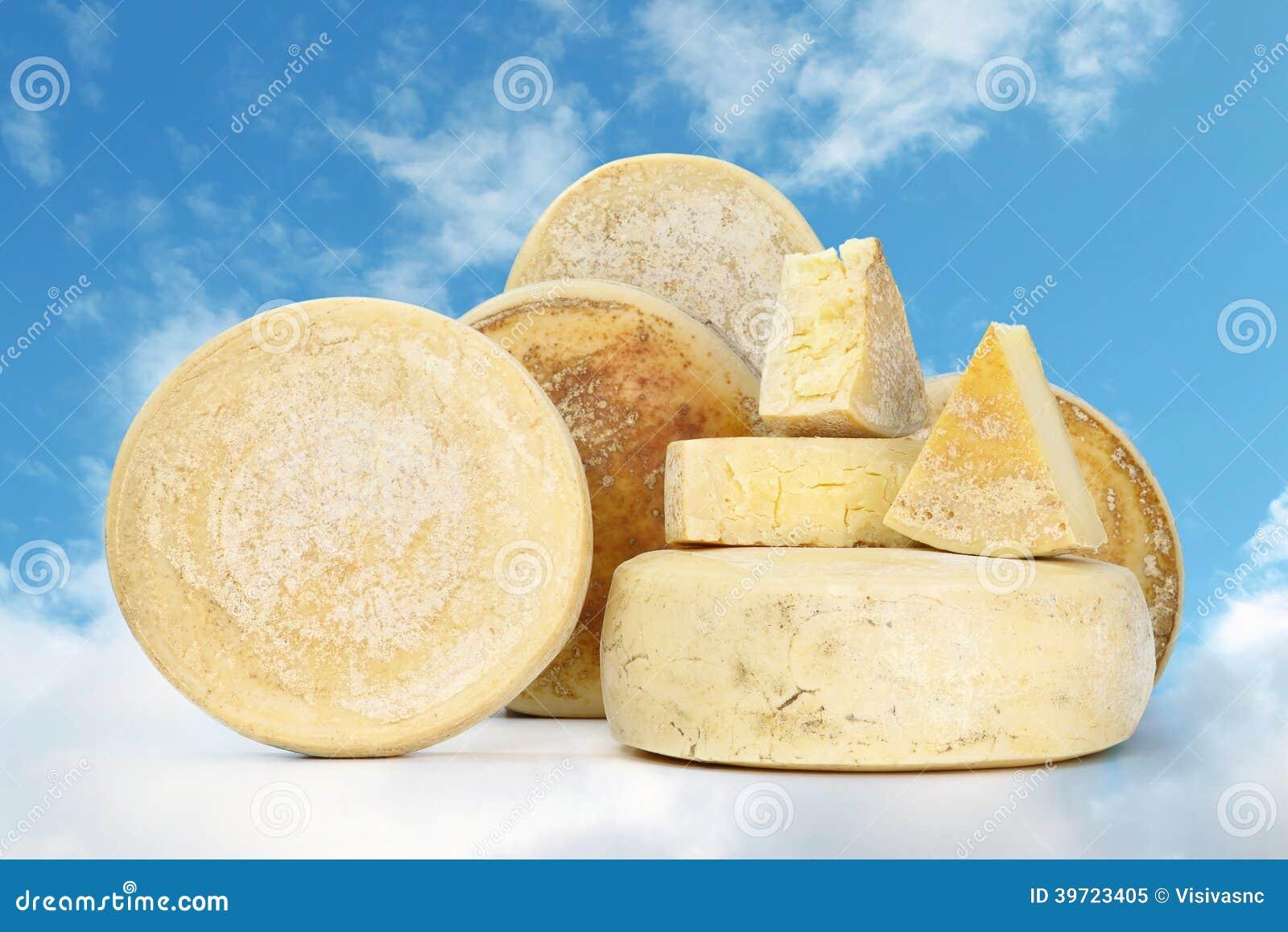 Olika typer av ost med bröd