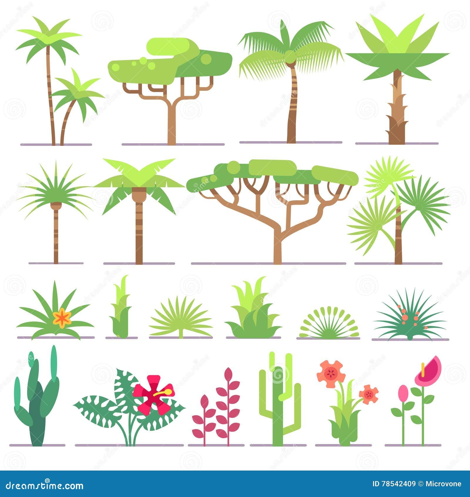 Olika typer av tropiska växter, träd, blommor sänker vektorsamlingen