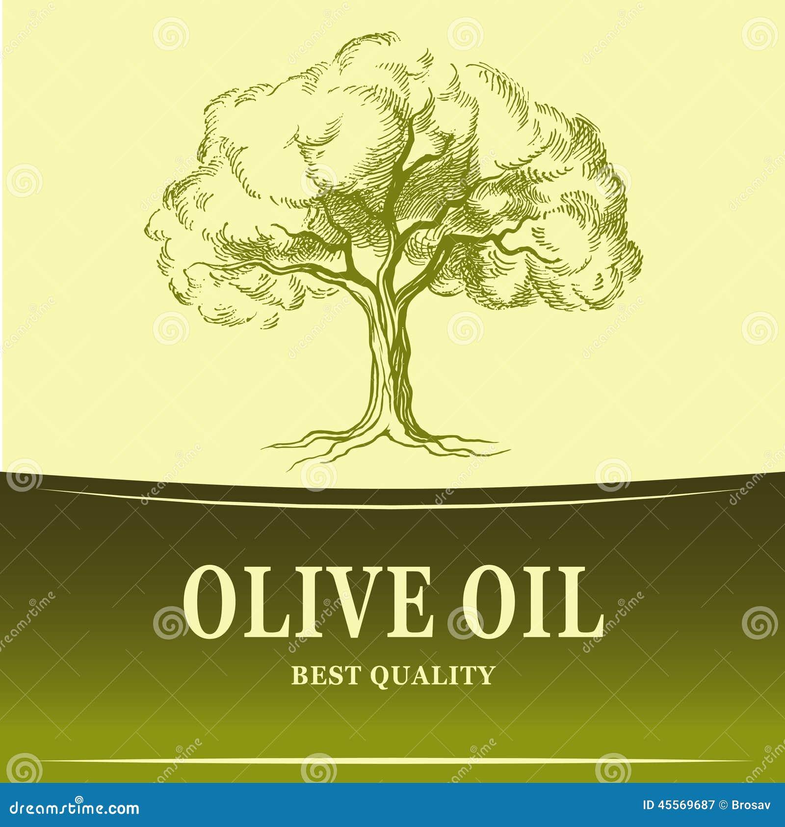 Olio di oliva di olivo di vettore per le etichette for Acquisto piante olivo