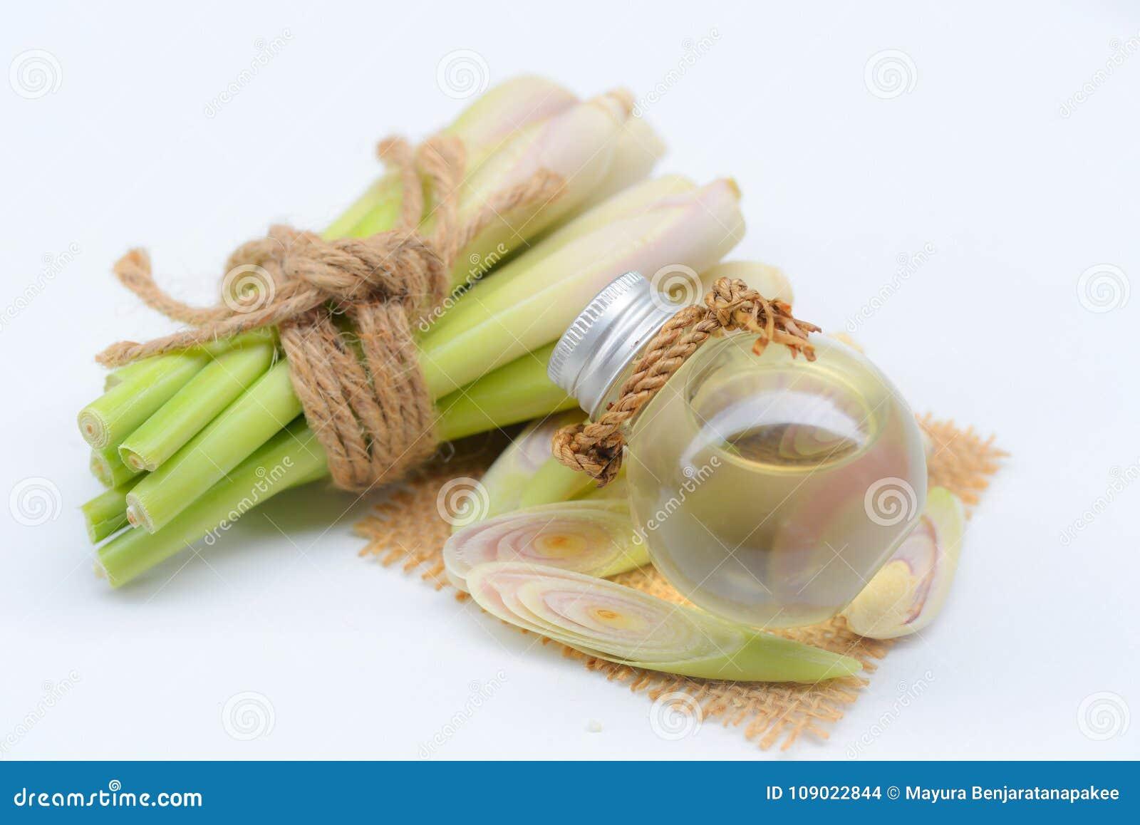 Olio essenziale della citronella con l aromaterapia