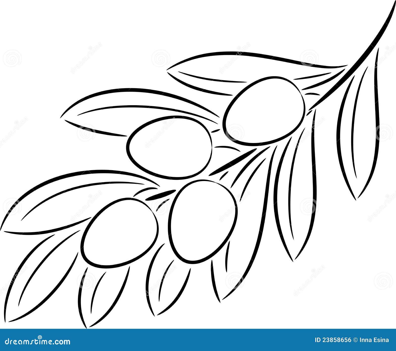 Short Vowel Worksheets 1st Grade 2 in addition Royalty Free Stock Image Olive Branch Image23858656 additionally Bryana Cuthbert wikispaces besides Skeleton label likewise Argon Nitrogen Aero Road Bike 2016. on art for nutrition