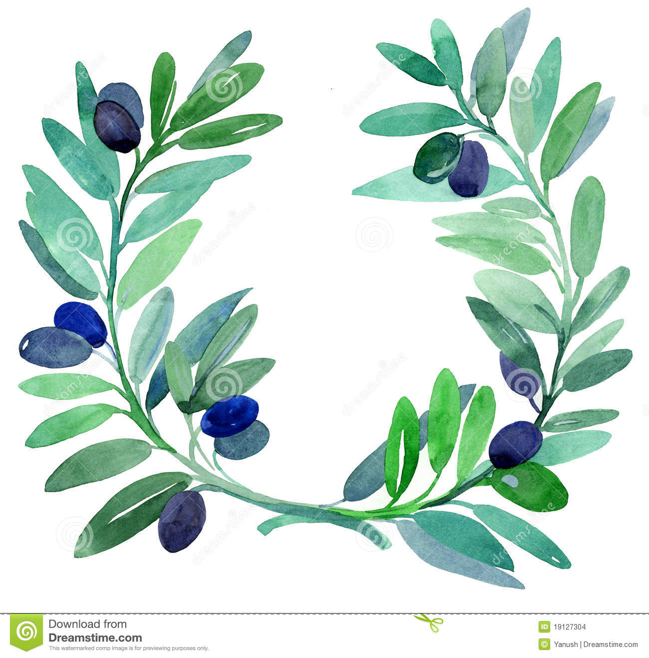 Olive Branch (MS) United States  City new picture : Olive Branches. Stock Images Image: 19127304