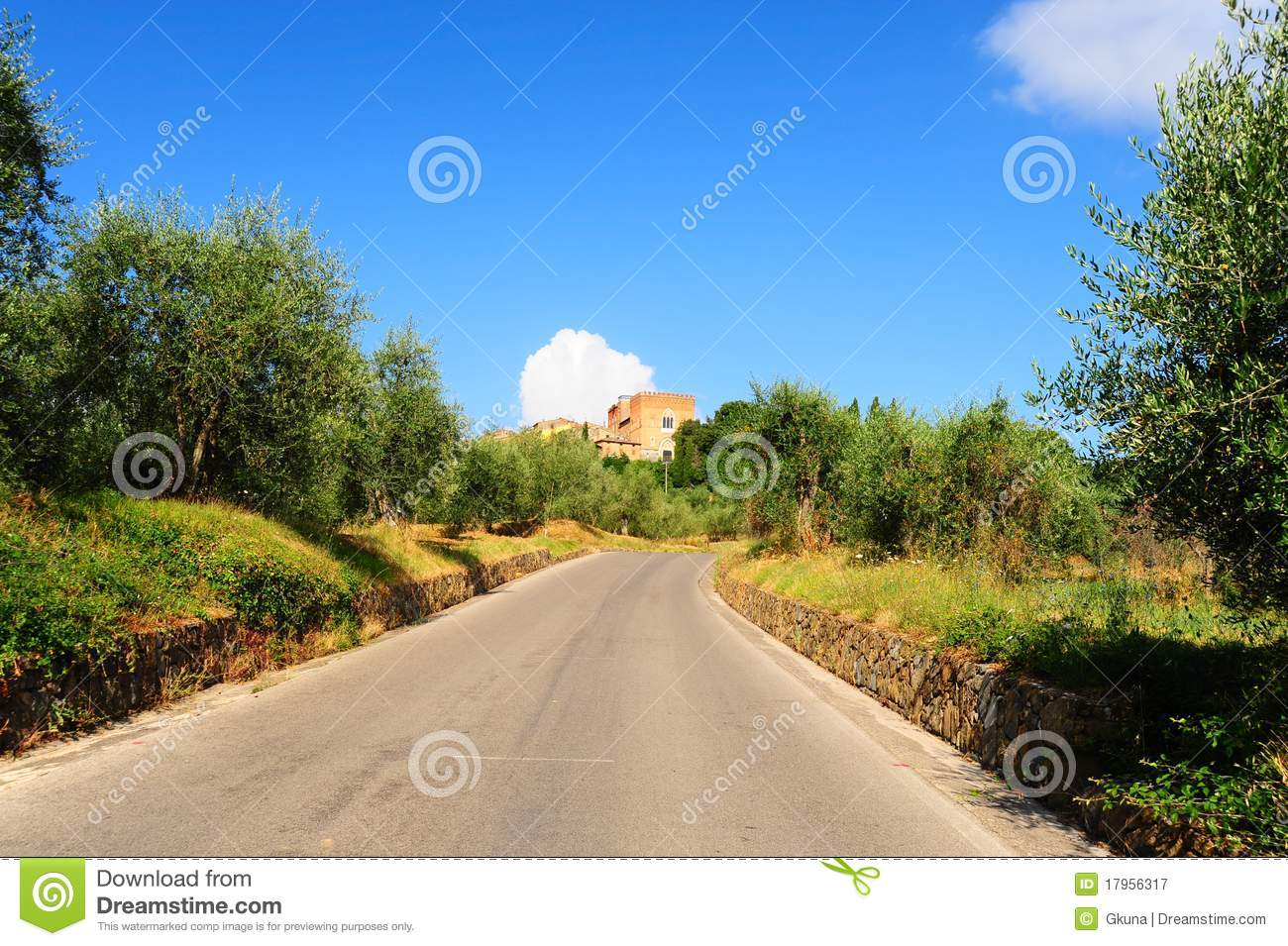 Olive Groves And Gardens In Montenegro Royalty Free Stock