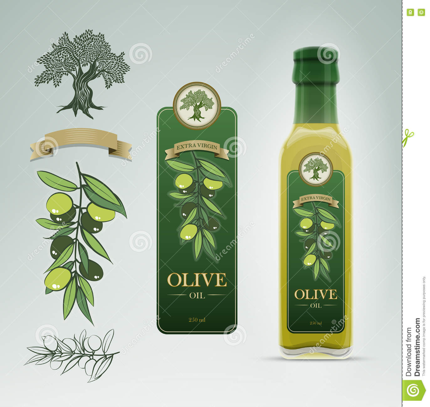 olive oil bottle and label design template stock vector