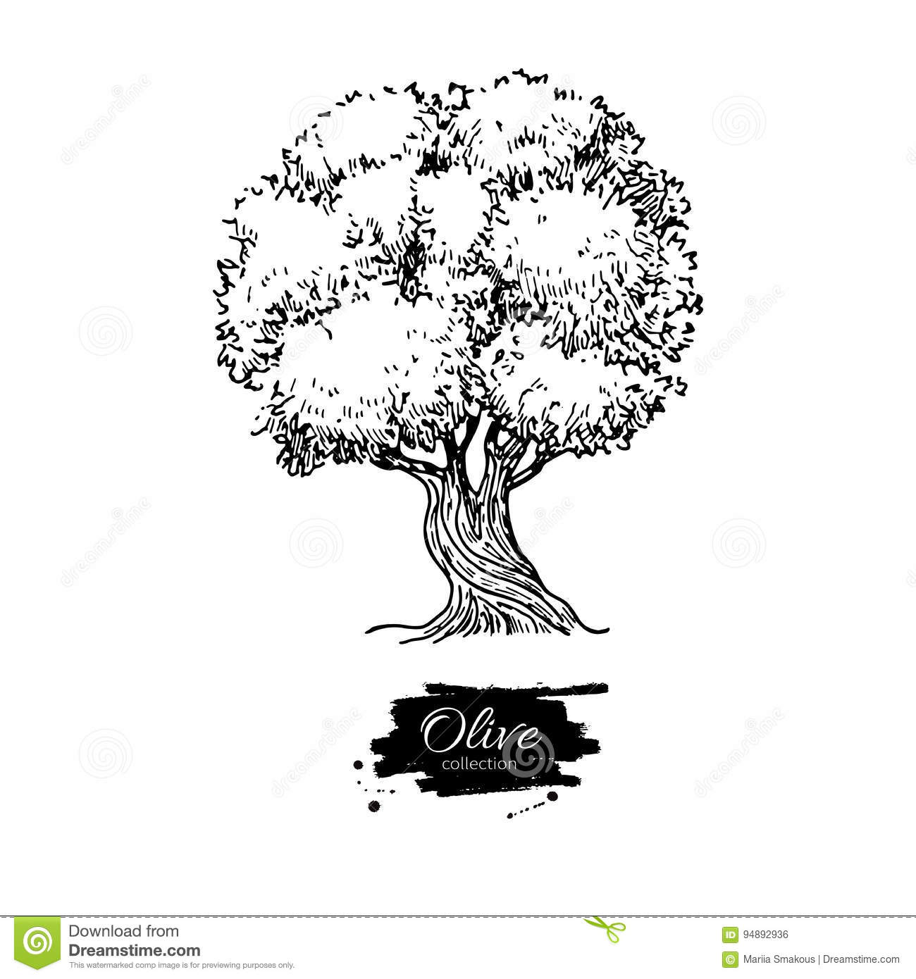 Olive tree hand drawn vector illustration vintage botanical download olive tree hand drawn vector illustration vintage botanical drawing old style engraved thecheapjerseys Gallery