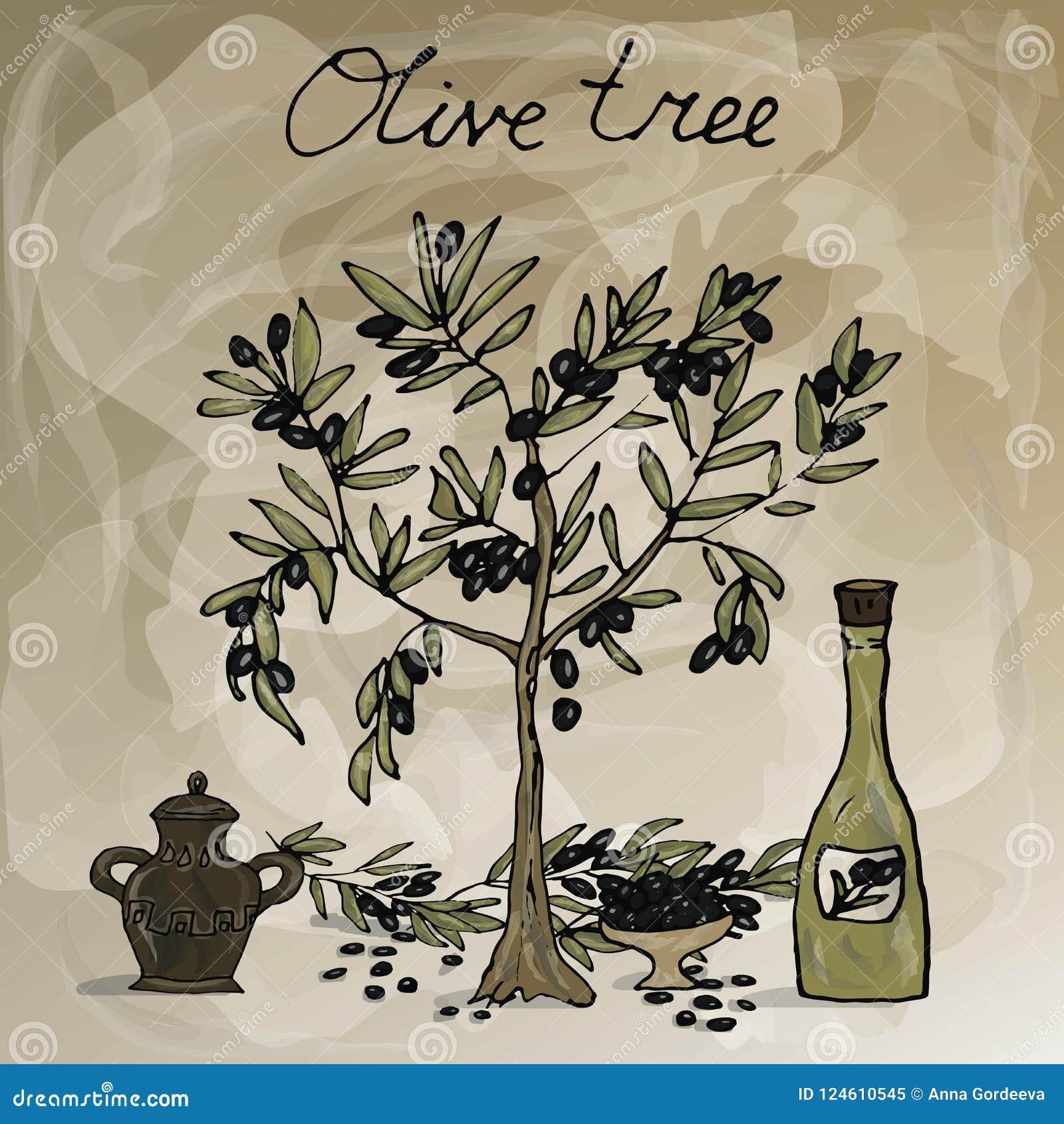 Olivo, botella con aceite de oliva y jarro label Espacio para su texto Ilustración a mano del vector