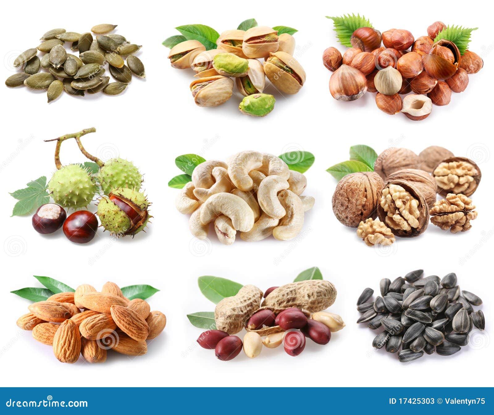 ?ollection van rijpe noten en zaden.